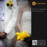 *Champion, 2010 Q1 (Category: Ceremony)