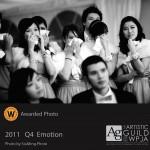 2011 Q4 (Category: Emotion)