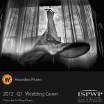 2012 Q1 Wedding Gown
