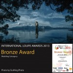 Loupe Awards 2013 - Bronze Award