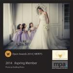 2014 Open Awards Merit